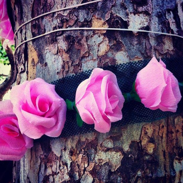 Pink Roses, Bellaria
