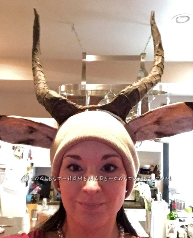 Amazing Taxidermy Animal Heads Group Costume