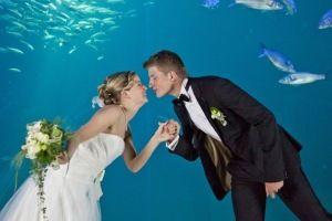 "Brautpaar vor dem Becken ""Offener Atlantik"" - © Johannes-Maria Schlorke"