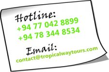 Fantastic Sri Lanka tour packages with Tropical way Tours Sri Lanka
