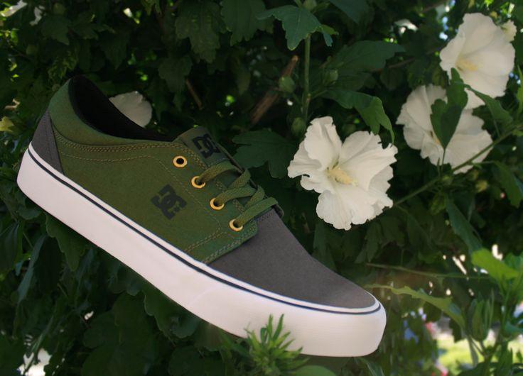 DC Shoes, Skate Shoes, DC Trase TX Grey/Black/Green