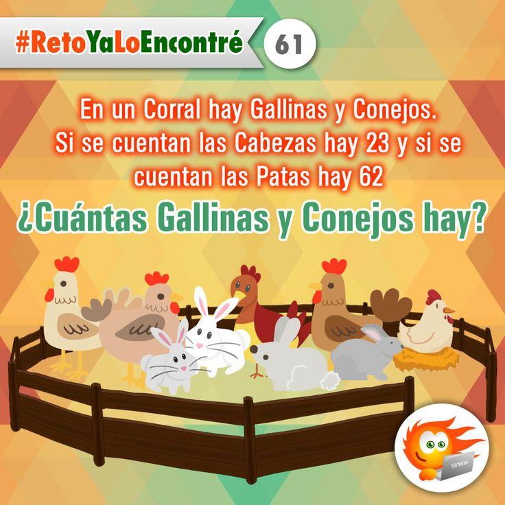 ¿Cuántas Gallinas y Conejos Hay? #RetosLógicos #Juegos