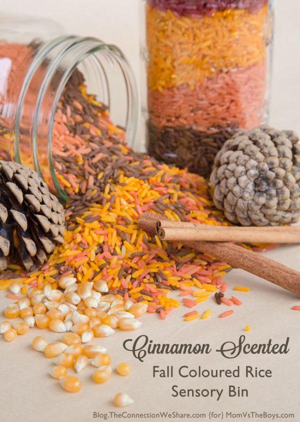 Cinnamon Scented Fall Colored Rice Sensory Bin