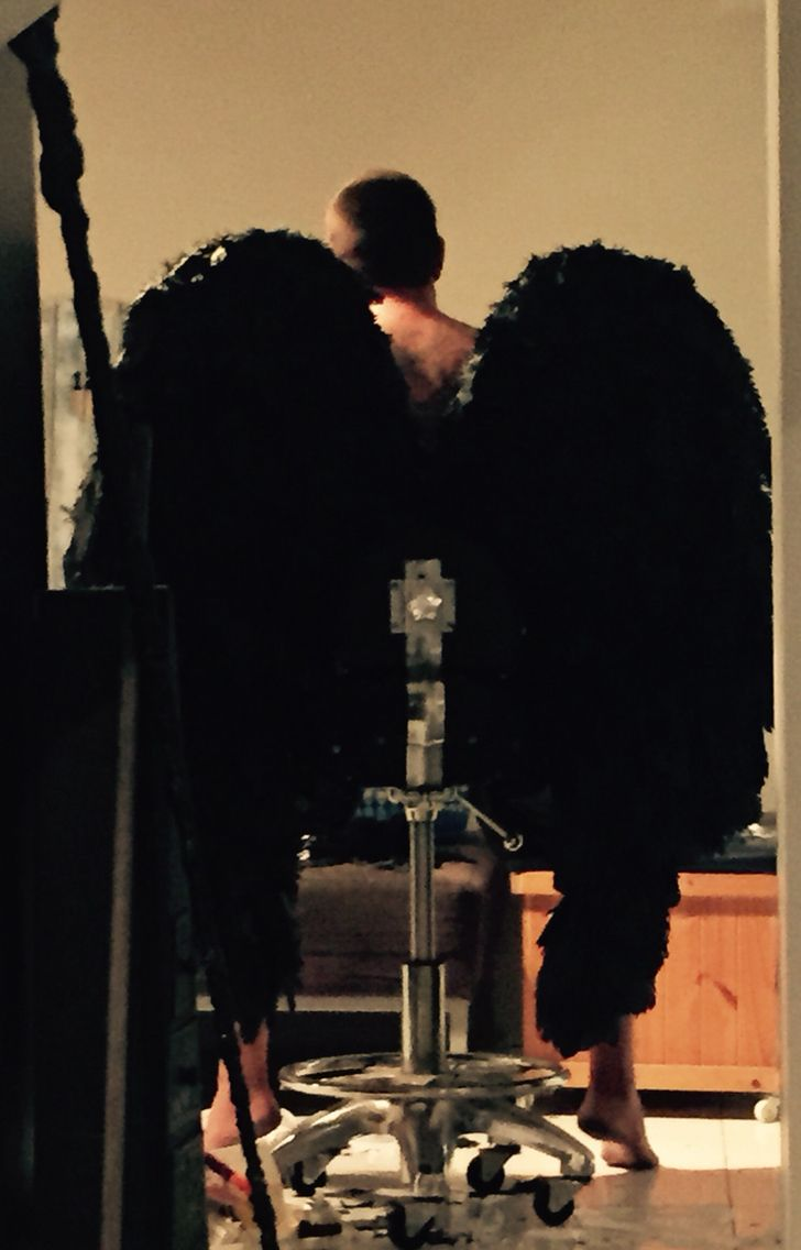 Wings from behind  Will get better pic soon