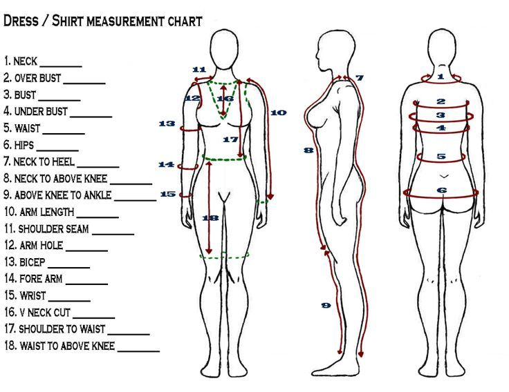 Body measurement chart for sewing: