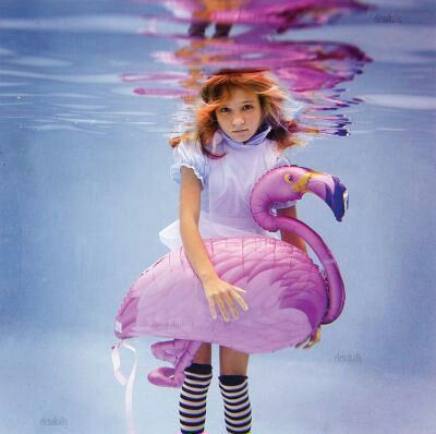 water  Alice  flamingo