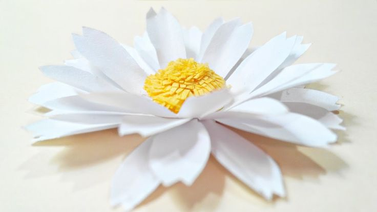 Chamomile, daisy paper flower diy tutorial.Paper flowers easy for childr...