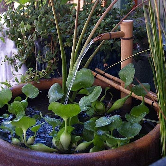 Bamboo Water Fountain DIY