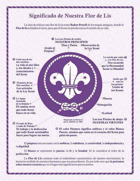 Hoy os traemos una buena imagen muy educativa. Sabéis el significado completo de la Flor de Lis, simbolo scout de siempre. En esta imagen, tenéis todos los significados de la Flor de Lis para que…