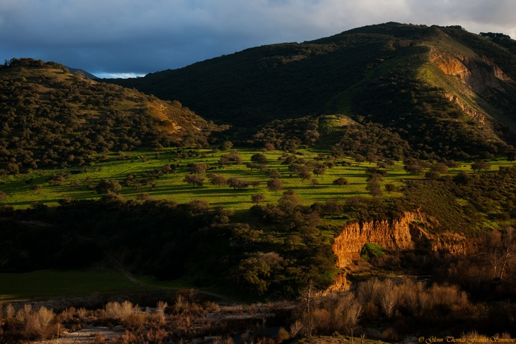 Arroyo Seco Valley offers spectacular vistas and little traffic on the two-lane country road that starts in the west in Carmel-by-the-Sea and ends where Arroyo Seco Valley meets the Salinas Valley at Arroyo Seco.