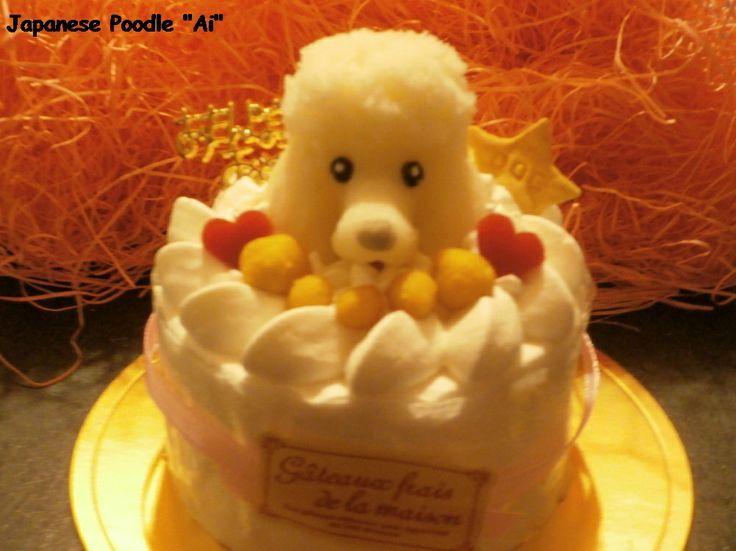 アイ10歳の誕生日 Ai's 10 th anniversary