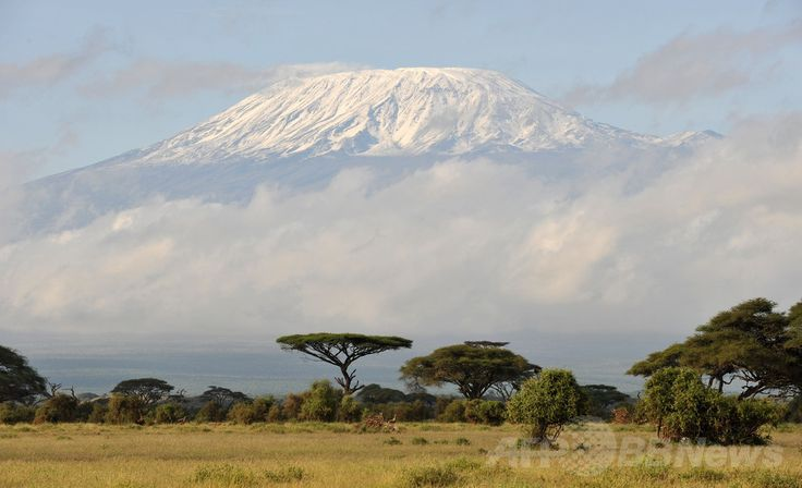 ケニアのアンボセリ(Ambuseli)国立公園から見たアフリカ最高峰キリマンジャロ(Kilimanjaro、2008年5月4日撮影、資料写真FILE)。(c)AFP/MLADEN ANTONOV ▼8Jul2014AFP タンザニアの観光地でレストランに爆弾投げ込み、8人負傷 http://www.afpbb.com/articles/-/3020024 #Kilimanjaro