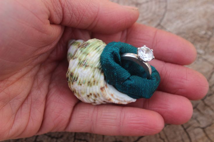 Engagement Ring Box, Proposal Box, Sea Shell, Beach, Nautical, Unique, Organic, Natural, Engagement Ring Gift, Ring Holder, Ring Dish by MountainUrsusDesigns on Etsy https://www.etsy.com/listing/112122668/engagement-ring-box-proposal-box-sea