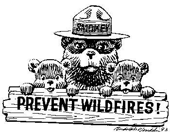 57 best smokey the bear images on pinterest smokey the for Free smokey the bear coloring pages