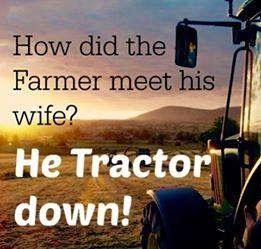 Farm Pun                                                                                                                                                                                 More