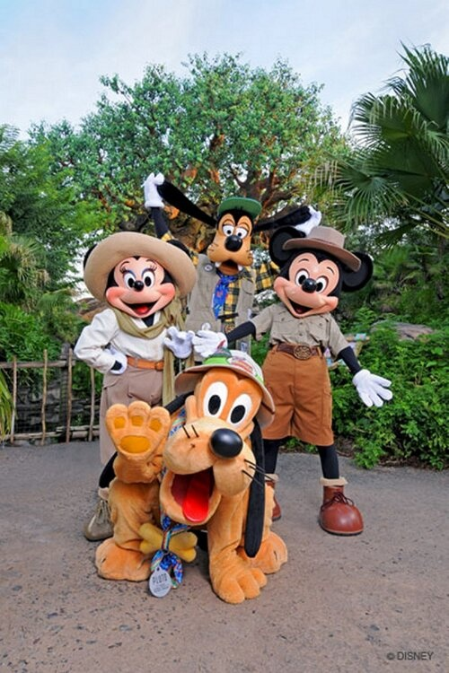 Disney's Animal Kingdom celebrates its 15th anniversary