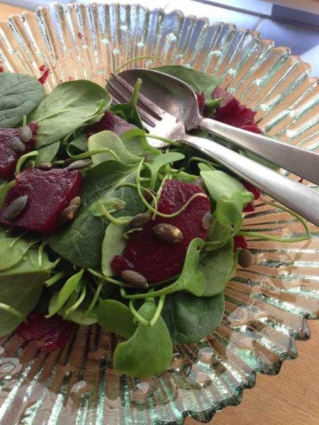 Recept voor een lekkere winterse lunchsalade. 500 g bieten 100 g winterpostelein 2eetlepels pompoenpitten 1 eetlepel balsamicoazijn 1/2 theelepel mosterd 1 theelepel honing zout en peper 2 eetlepe…