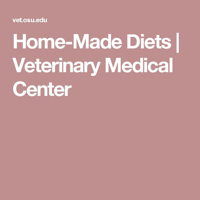 Home-Made Diets   Veterinary Medical Center