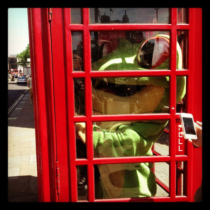 Cha Cha has always wanted his photo taken in a London red phone box! http://www.therainforestcafe.co.uk