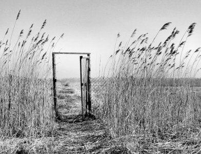 Михаил Эпштейн: Пустоводство, или Как делать ничего – Михаил Эпштейн – Блог – Сноб