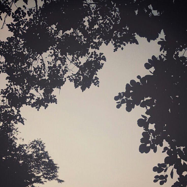 sky when i miss u