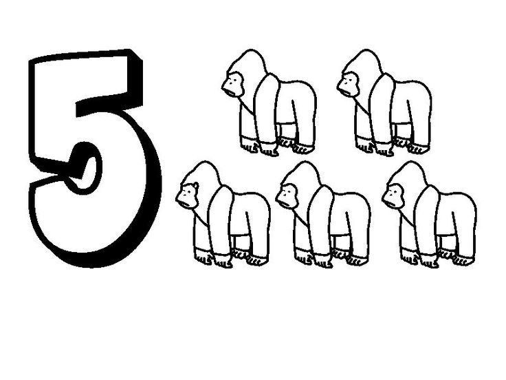 Animal Numbers Five Gorillas