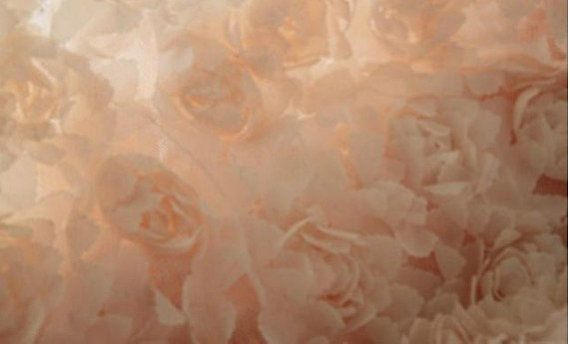 rosette lace fabric in peachwedding drop lace fabric by Retrolace
