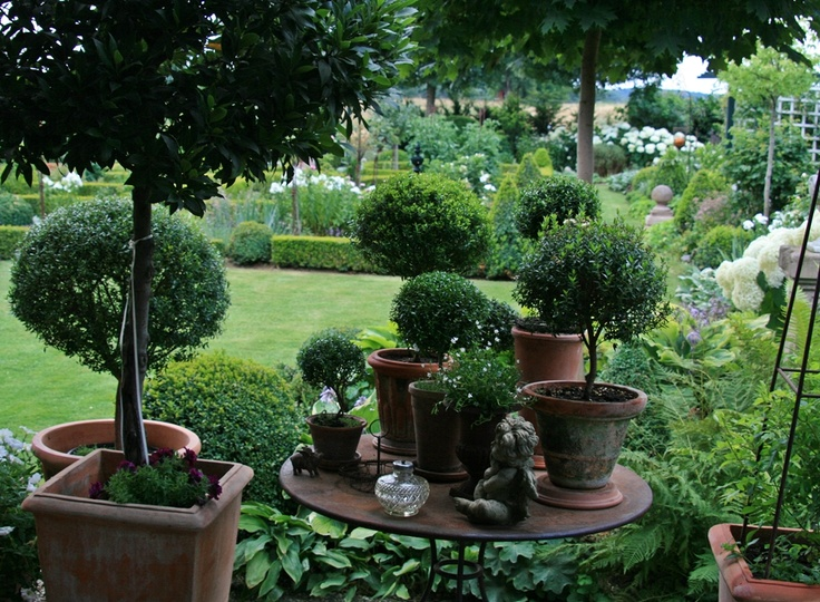 schnell wohnen und garten foto buchsbaum pinterest gardens. Black Bedroom Furniture Sets. Home Design Ideas