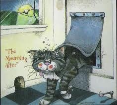 Gary Patterson's Cats. Saved by monkeetree.com
