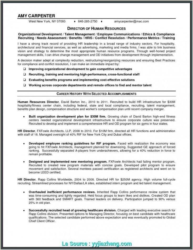 Executive director resume sample non profit executive
