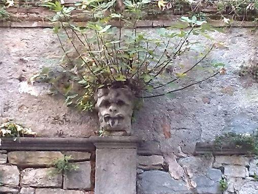 Mal di testa. Foto scattata in un giardino di Bergamo - foto di Enrico Corna --- Questa fotografia partecipa al Concorso Fotografico Bergamo, per votarla condividila dalla pagina Facebook http://on.fb.me/1bfzk4E (la trovi tra i post di altri) e carica anche tu le tue foto su www.orobie.it per partecipare al concorso!