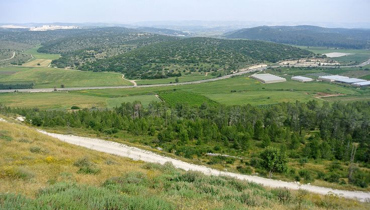 Valley of Elah viewed from the top of Tel Azeka.