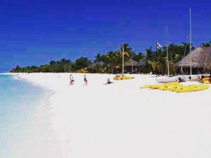 It was so wonderful #kuredu #kureduislandresort #kureduisland #malediven #maledives #beach #beaches #beachlife #beautiful #strand #scuba #scubadiving #vacation #holiday #hotel #resort #islands #travel #travelphoto #traveling #travelling #travelphotography #instagay #instanice #instatravel by be_blessed