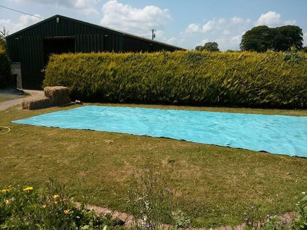 Pictures posted on the web show how lads created their own paddling pool