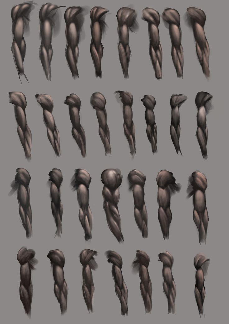 Arm Studies by *JoshSummana on deviantART https://www.facebook.com/CharacterDesignReferences