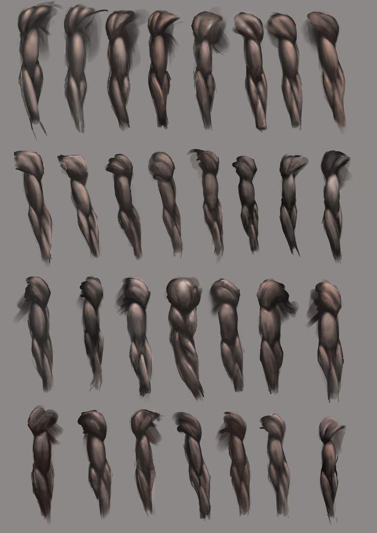 Arm Studies by *JoshSummana on deviantART https://www.facebook.com/CharacterDesignReferences
