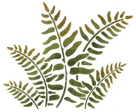 Quickly and easily create a unique natural design in your home with our with our Fern Painting Stencil!