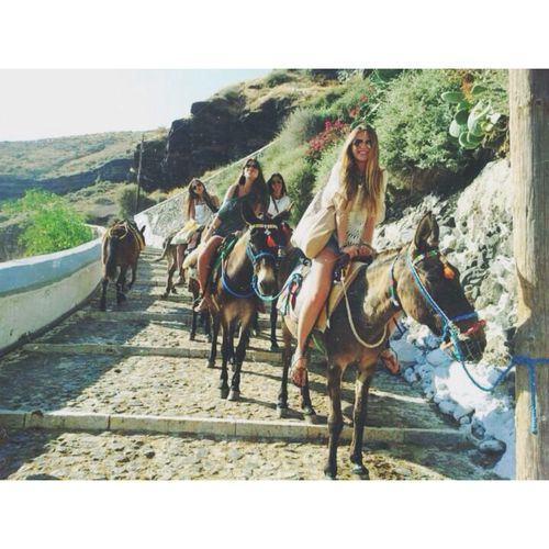 Ask your concierge to arrange for you a donkey ride. Oia Mansion. Oia village, Santorini island, Greece - www.oiamansion.com