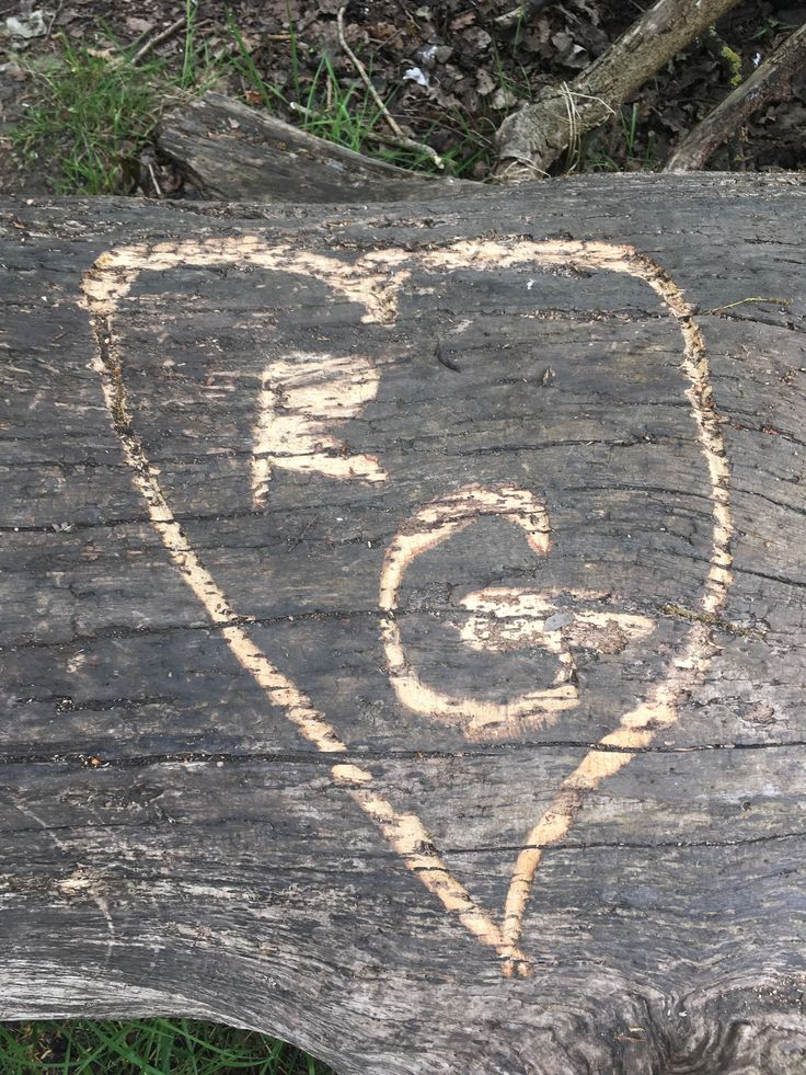 RG in a heart, carved on a fallen tree on Tooting Common, May 2017