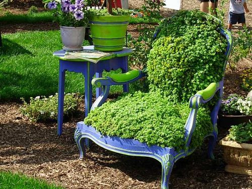A garden chair! Find an antique chair, plant seeds over the seat, place it outdoors, and this is what you get. Charming and creative!