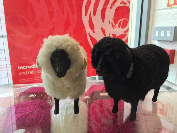 13.02.15 - Coolest thing in the Sue Ryder shop and not for sale. Would even go as far as to say woman got arsey by me even touching them (the sheep that is), so - of course - touched them more. She could have just asked nicely . . .