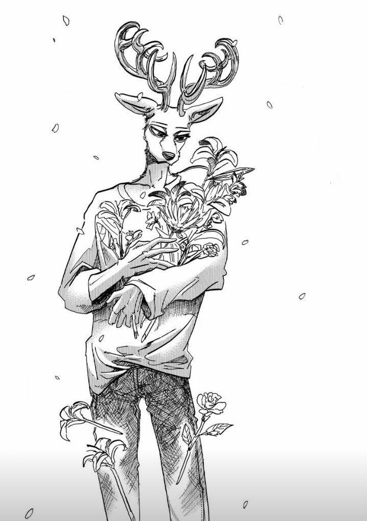Beastars comic   Anime furry, Sketches, Art
