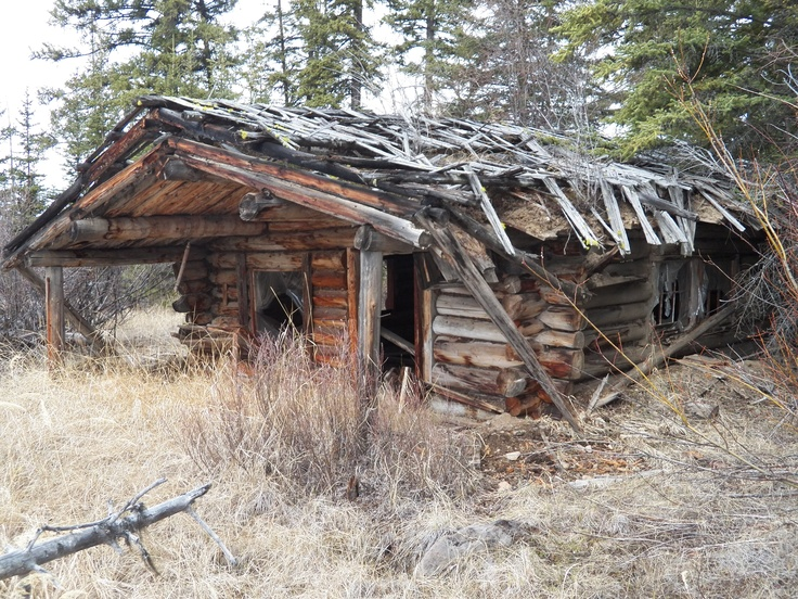 17 best images about historic log homes on pinterest for 0 down homes