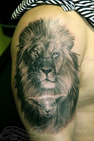 Lion Tattoo Ideas 3 Lion King of the Jungle Tattoo Ideas