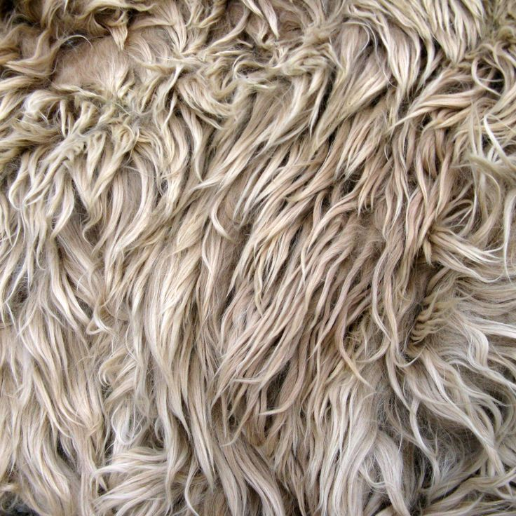 Suri Alpaca Fleece, Raw, Unwashed, for Doll Hair and Spinning, 9 ounces from Grease by NorthStarAlpacas on Etsy