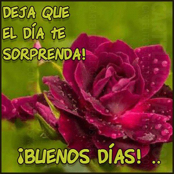 buenos #dias                                                                                                                                                                                 Más