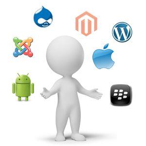 Hire A Programmer / Developer « Montek Services