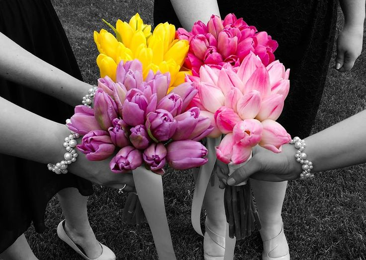 Each bridesmaid had a different colour tulip, the brides bouquet had all the colours combined