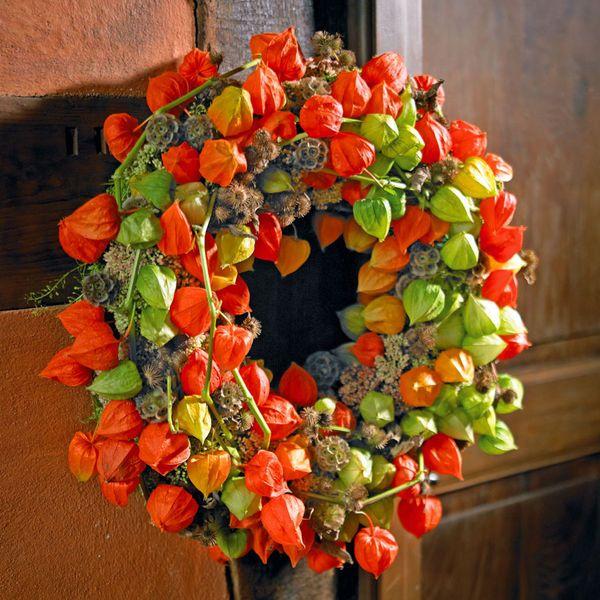 Herbstkranz aus Lampionblumenfrüchten