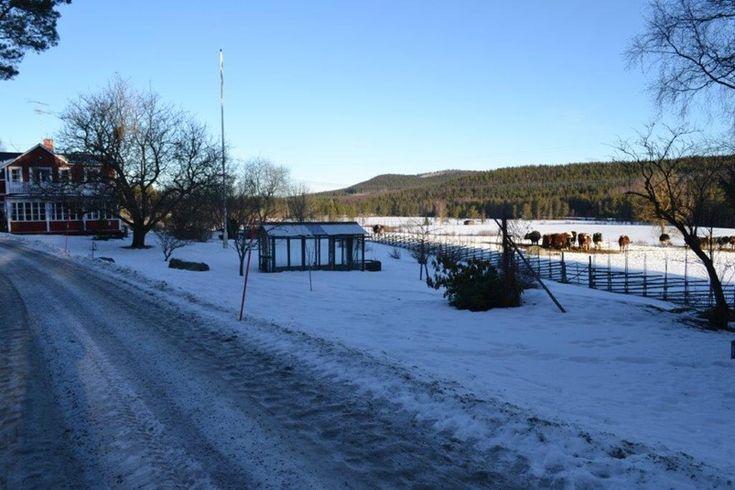 Stuga till uthyrning som ligger på en bondgård i Hälsingland. Klicka vidare på bilden för mer information, perfekt för en härlig semester i norra Sverige.